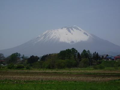 Iwatesan